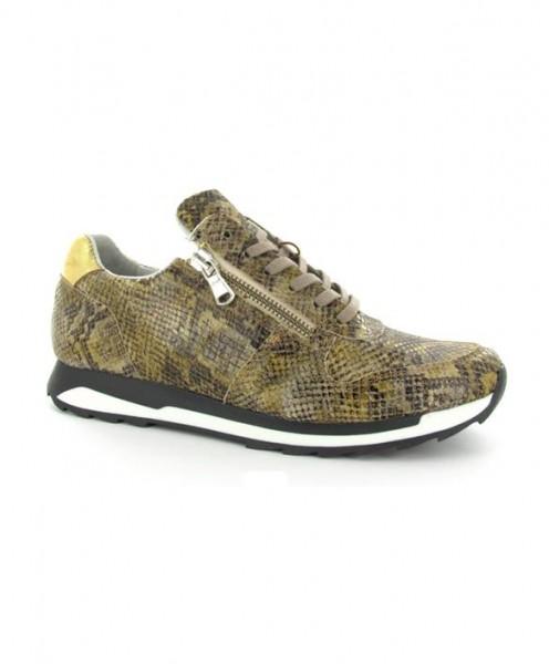 Post Xchange Carly 202 Damen Sneaker Snake Print